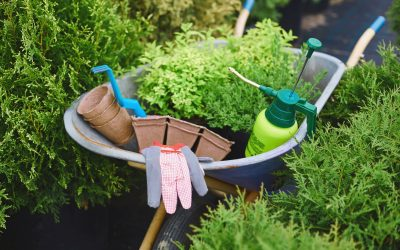 8 Garden Tools to Transform Your Yard