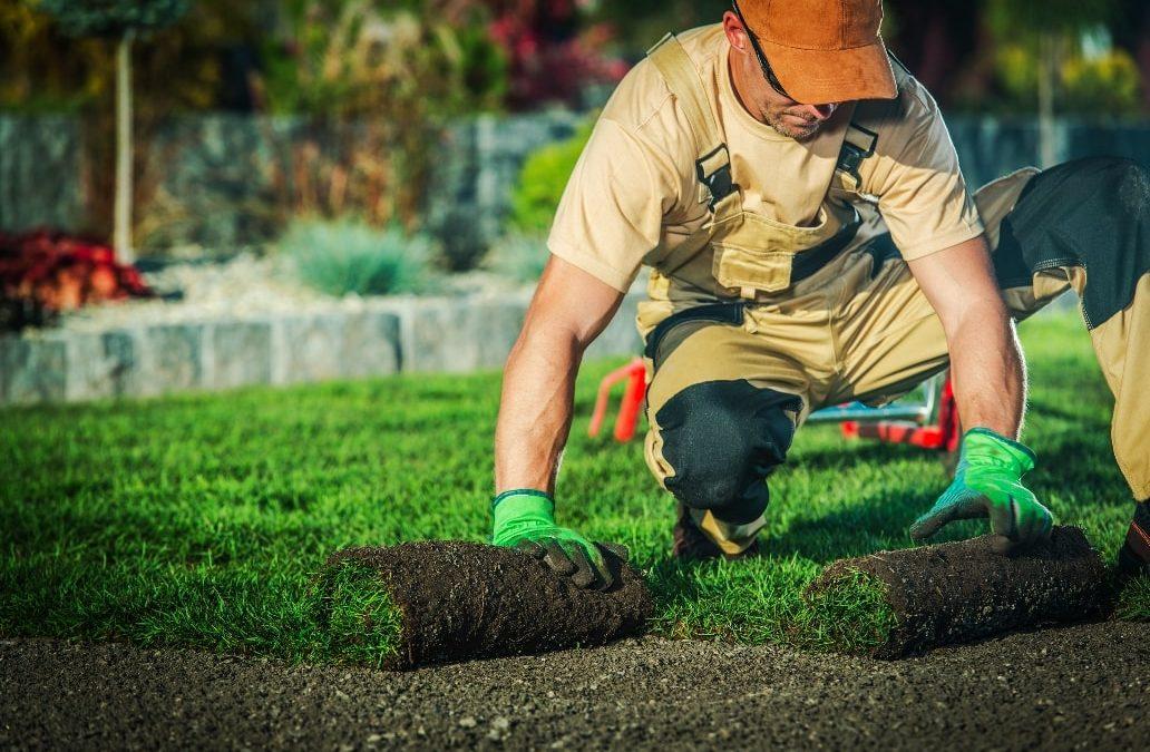 Tools & Equipment a Professional Landscaper Needs